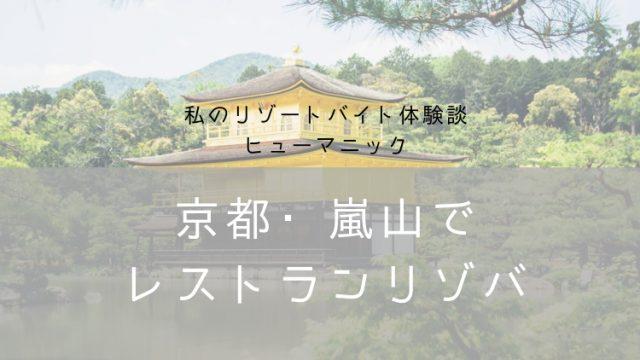 リゾバヒューマニック体験談・ナナメドリ