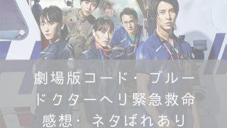 コードブルーネタバレ映画・ナナメドリ